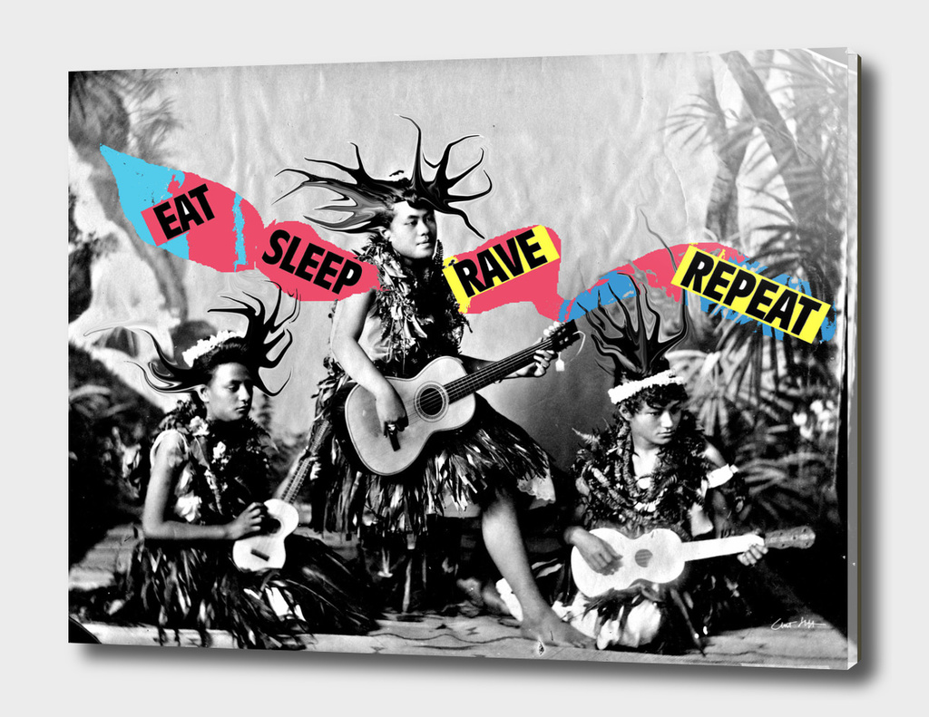eat sleep rave repeat hula