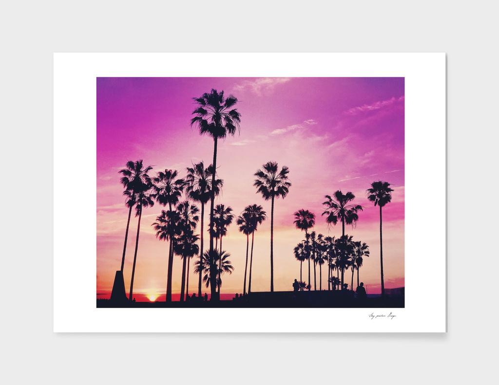 Sunset Palms Purple Tropical Sky