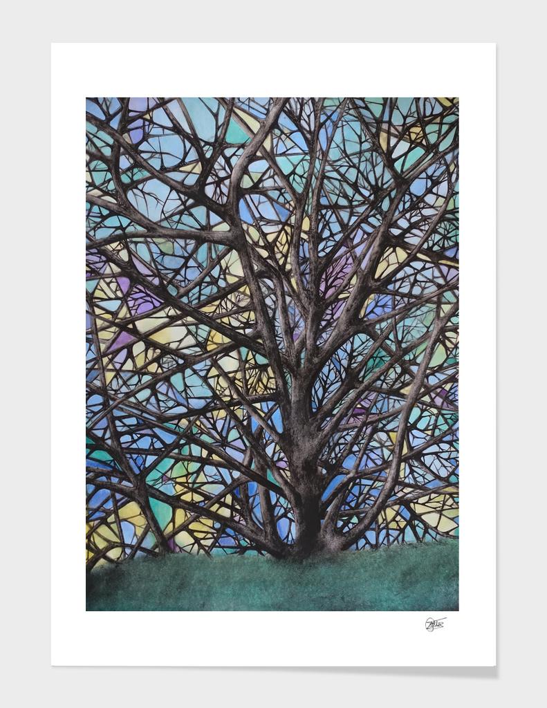 Parra_Tree - Declination I