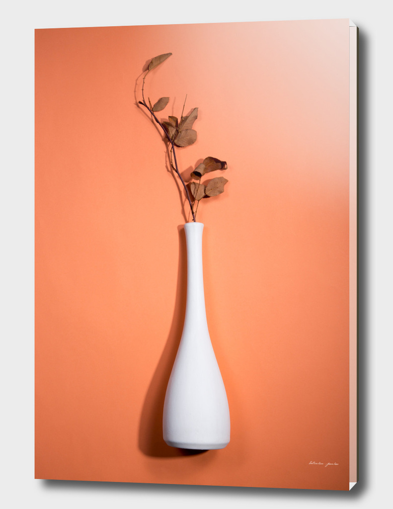 Still Life with Vase and white twig with leaves