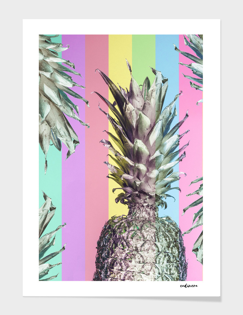 Colorful Pineapple Tops