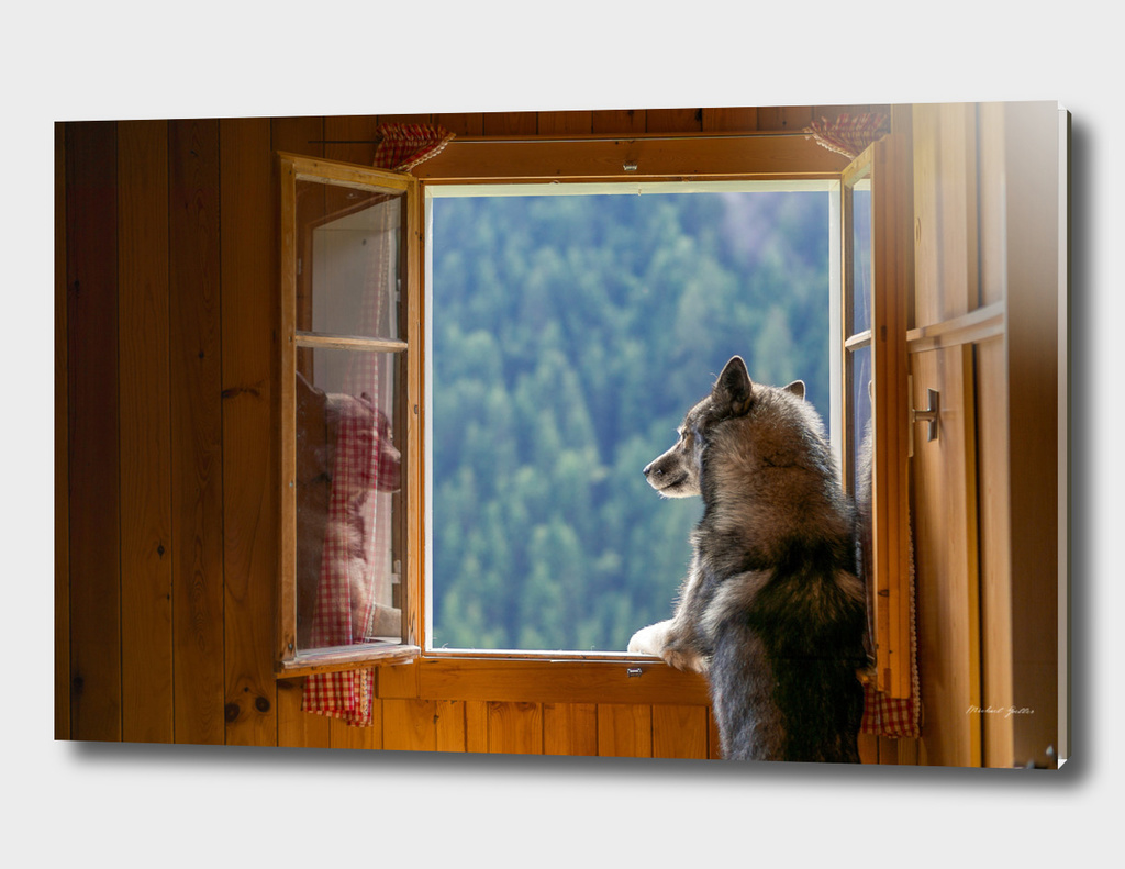 Ninja looking out of a mountain cabin's window