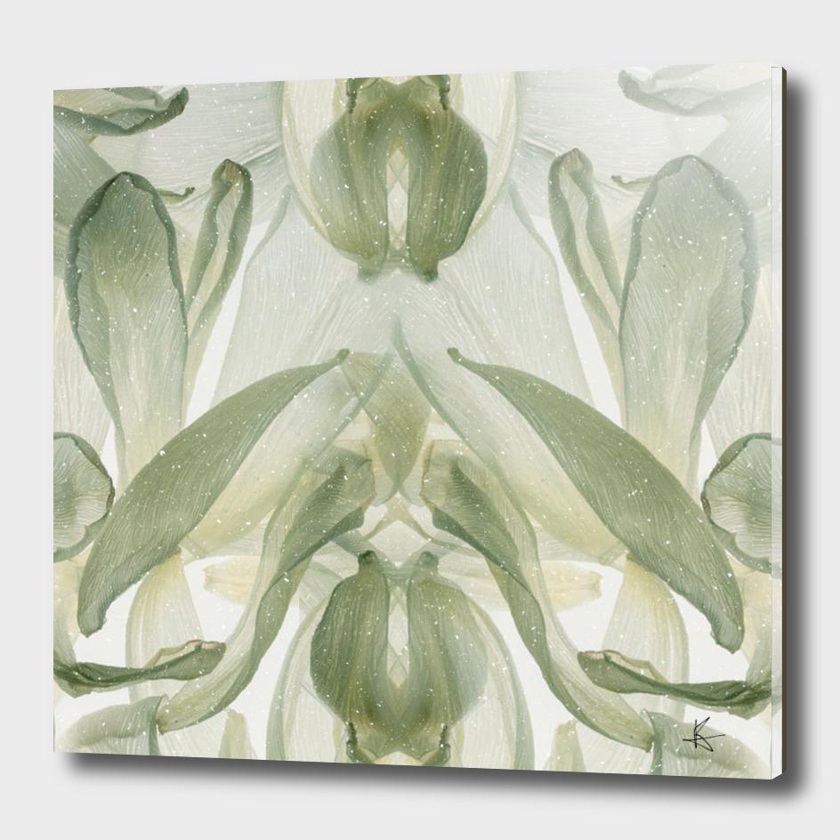 Botanical bloom