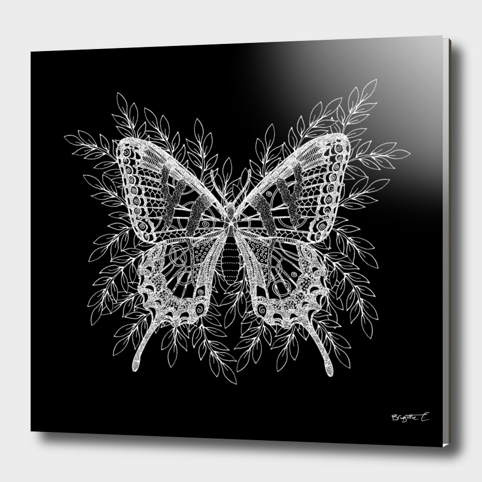 Black and White Butterfly Design