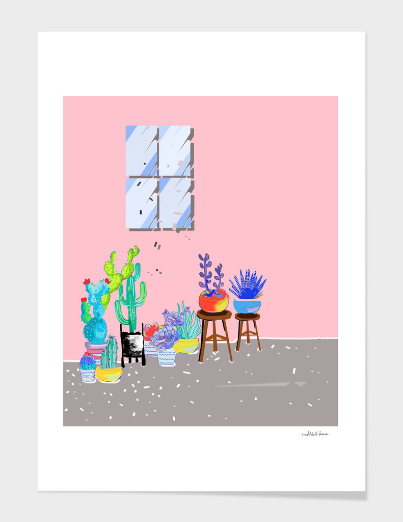 cactus garden - illustration 4