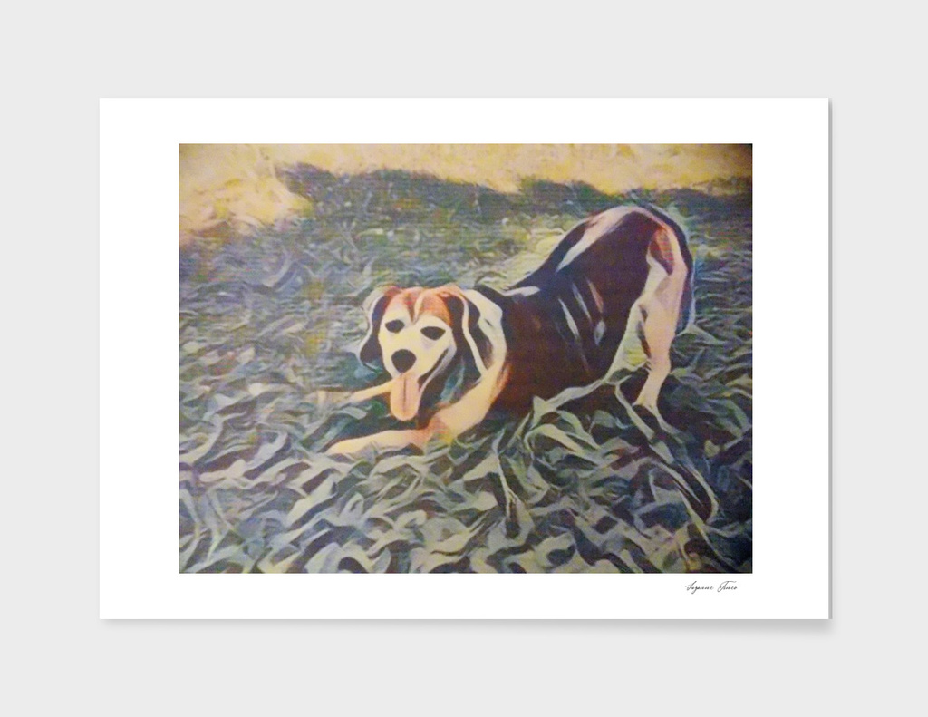 Stretching Beagle By Suzanne Tineo