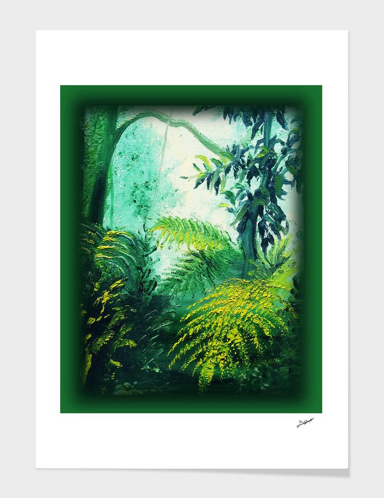Rainforest Lights and Shadows