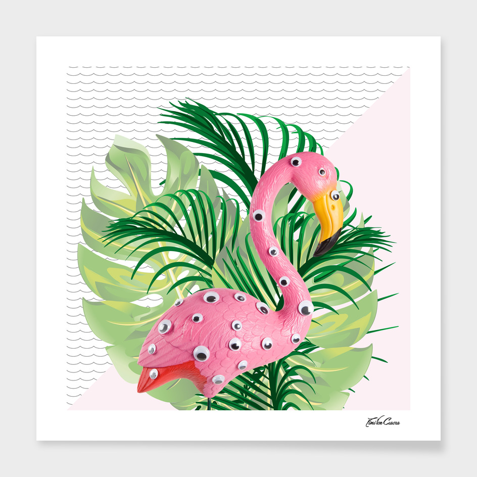 freak flamingo tropical