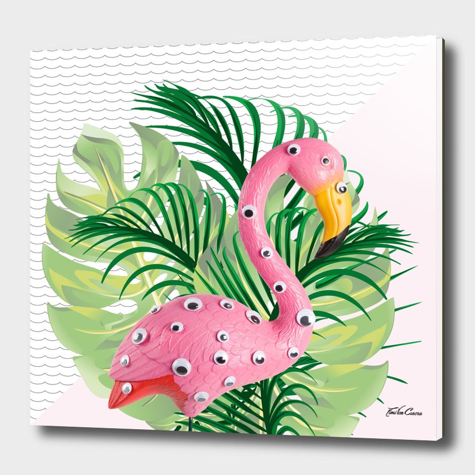freak flamingo tropical
