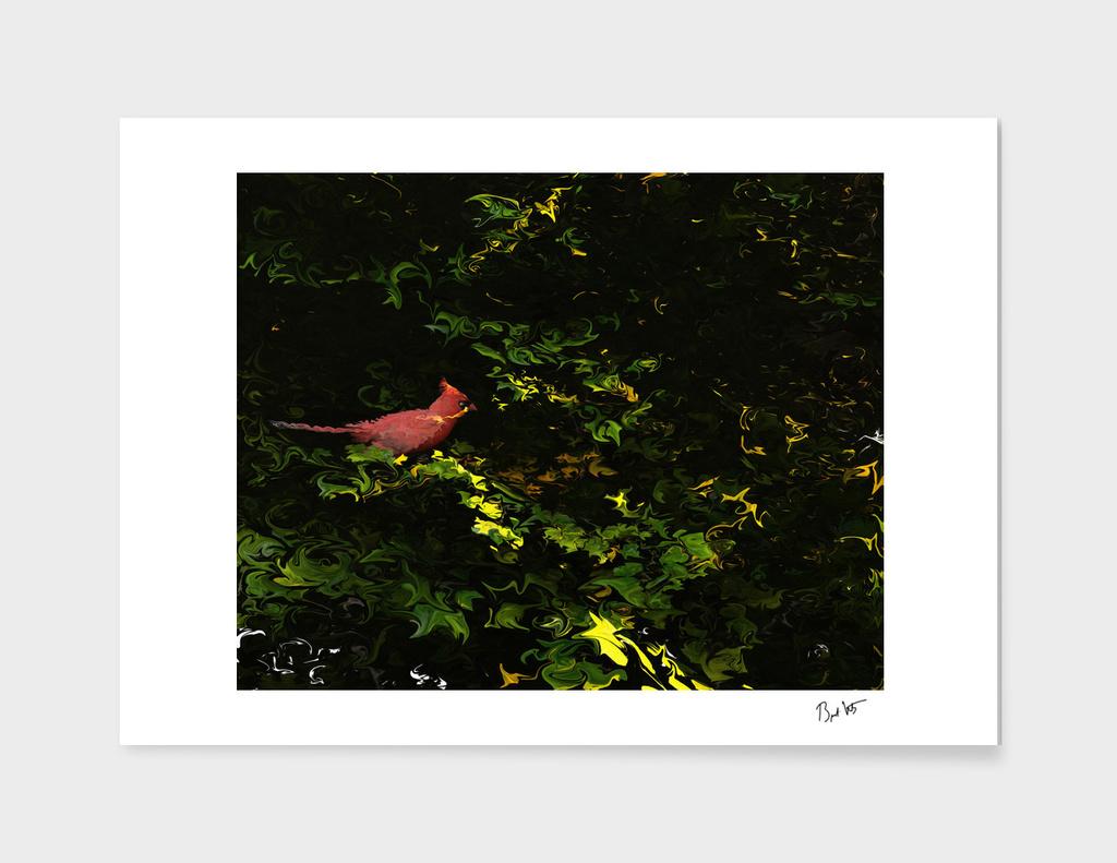 Cardinal In Summer
