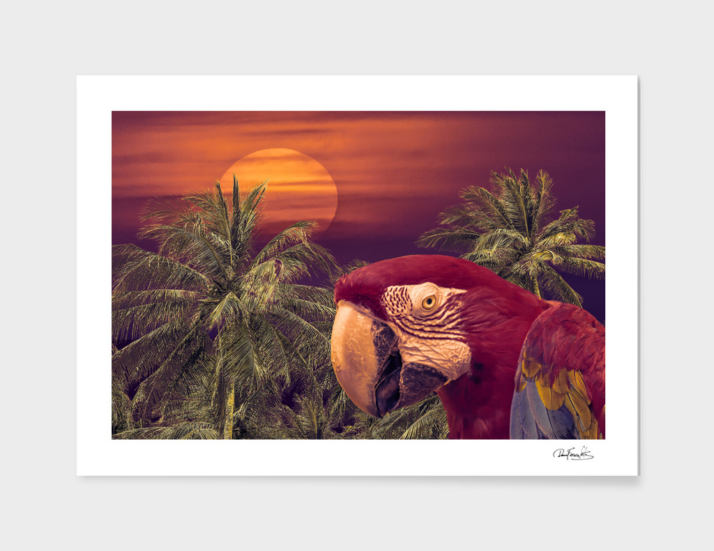 Tropical Style Collage Design Poster