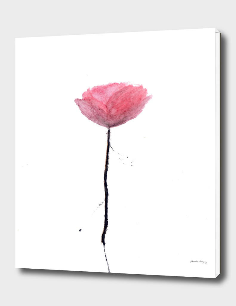 Splatter Poppy Flower