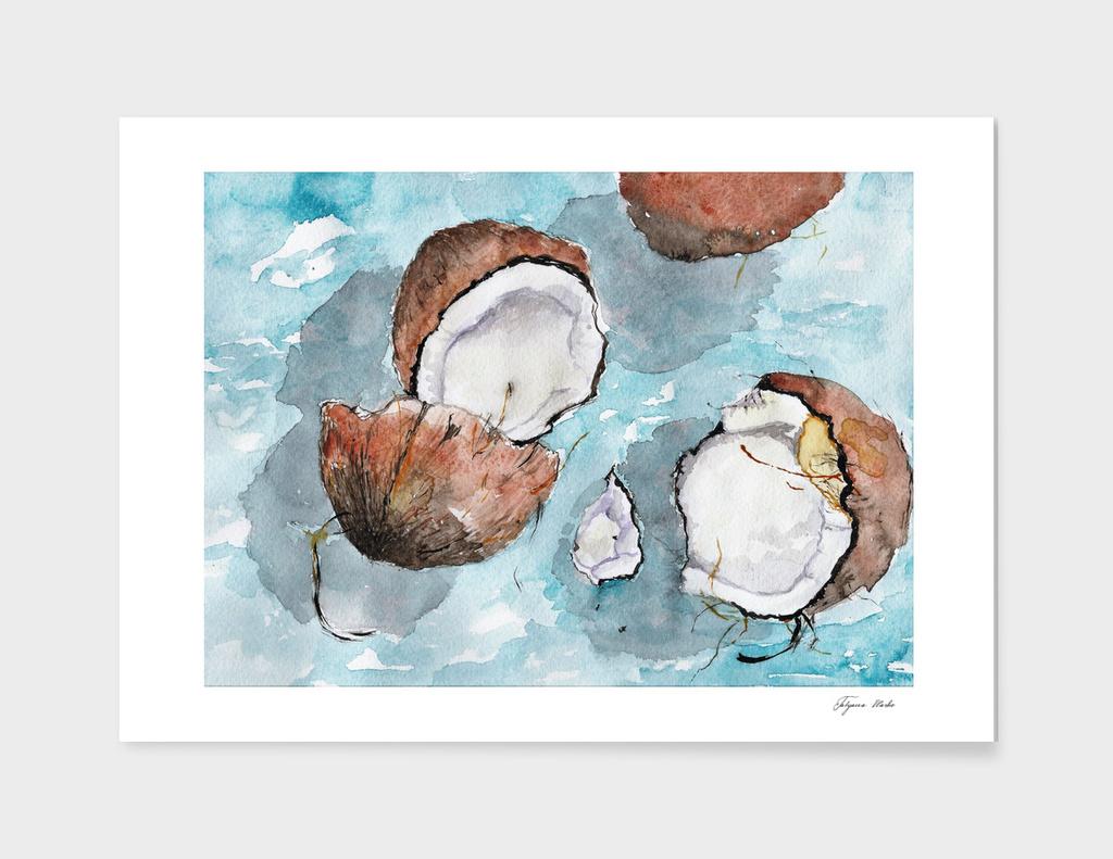 sunny coconuts