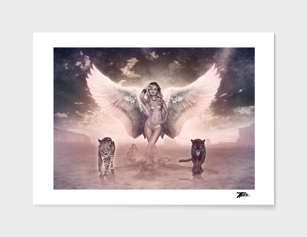 Angel C18