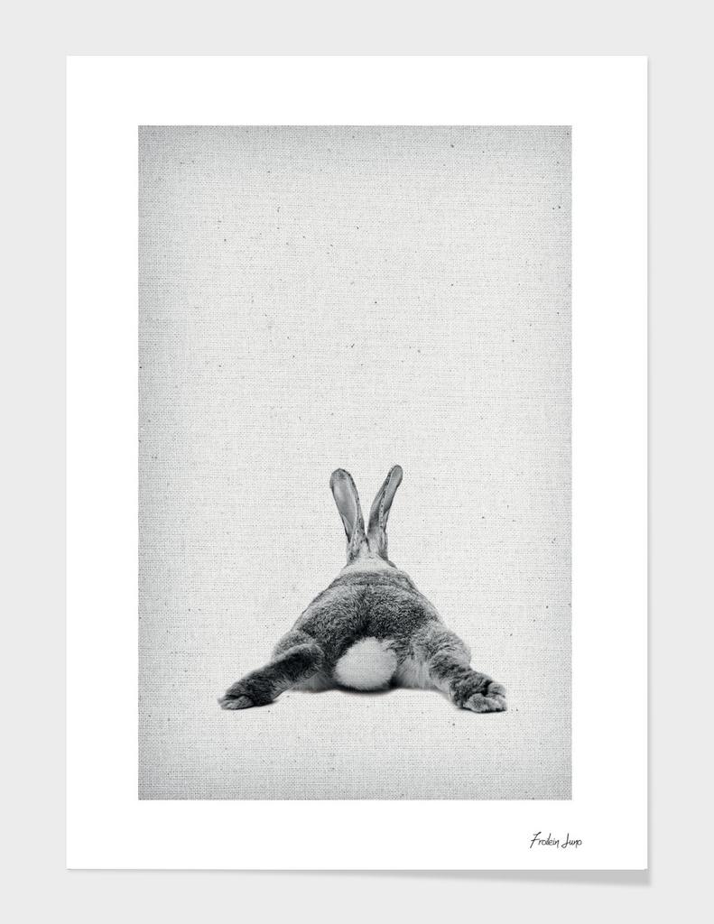 Rabbit 20