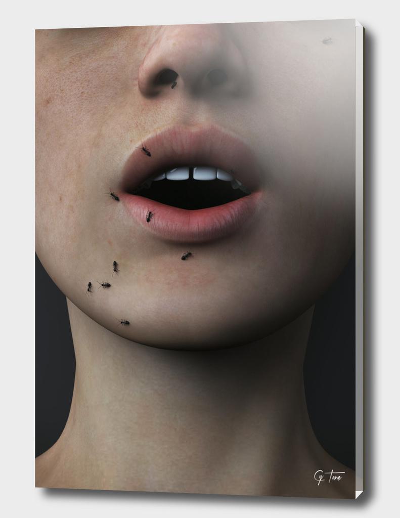 /driːms//əˈbaʊt//ænts/ - Dreams About Ants