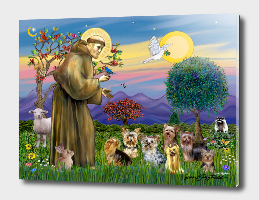 Saint Francis Blesses Seven Yorkies