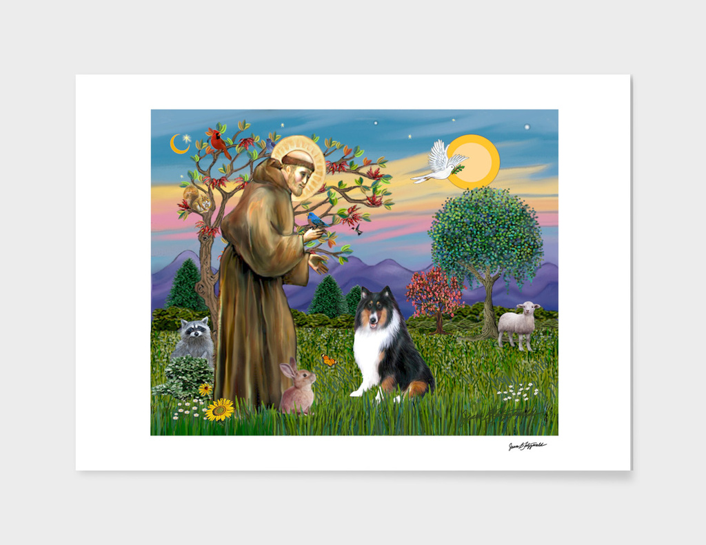 Saint Francis Blesses a Tri Colored Collie