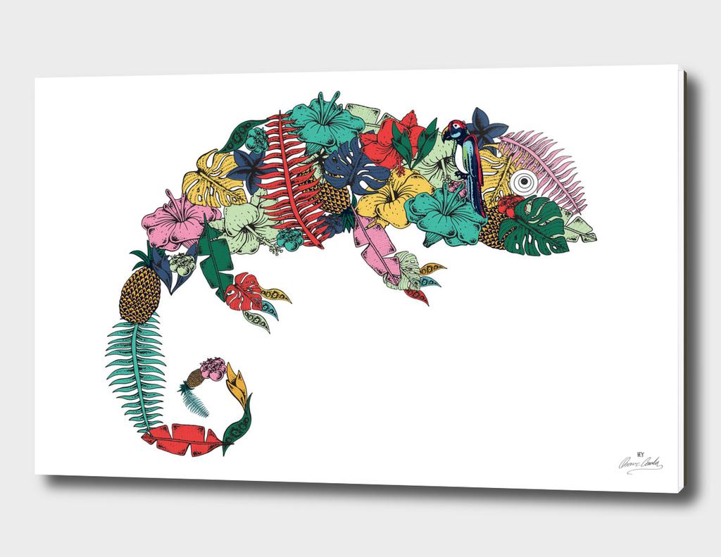 Tropical Chamaleon