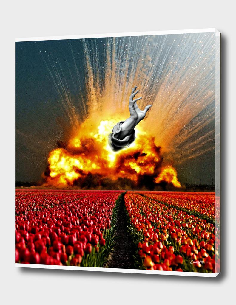 Tulip Apocalypse