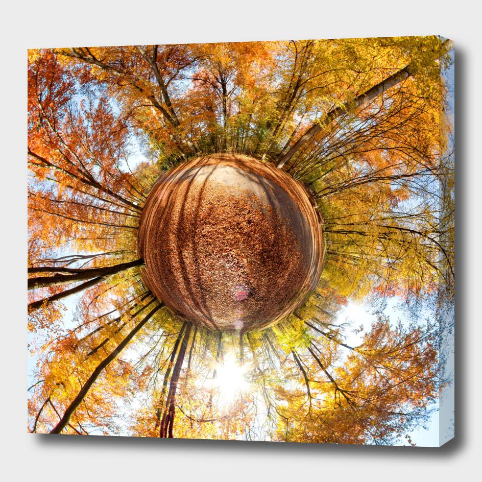 Planet Fall