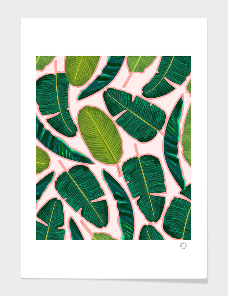 Banana Leaf Blush