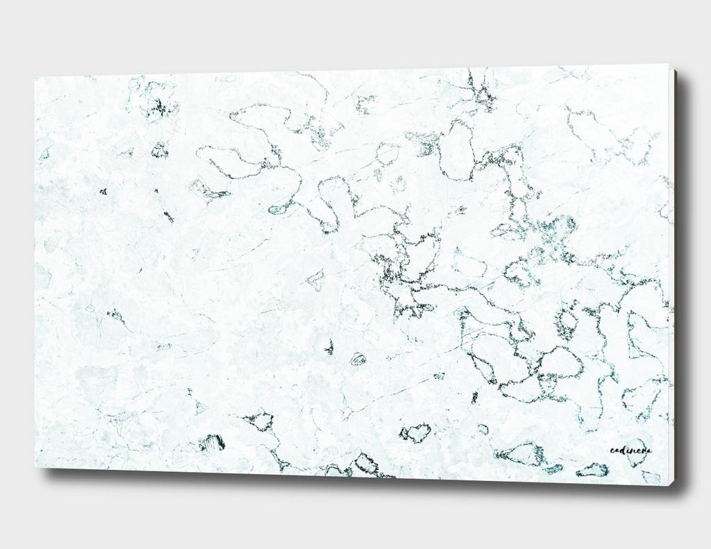 Marble Elegance