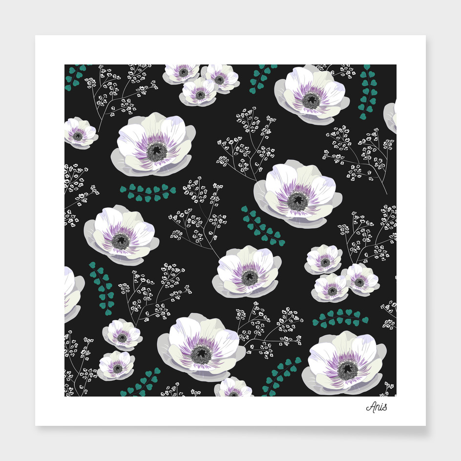 Anemones with black background