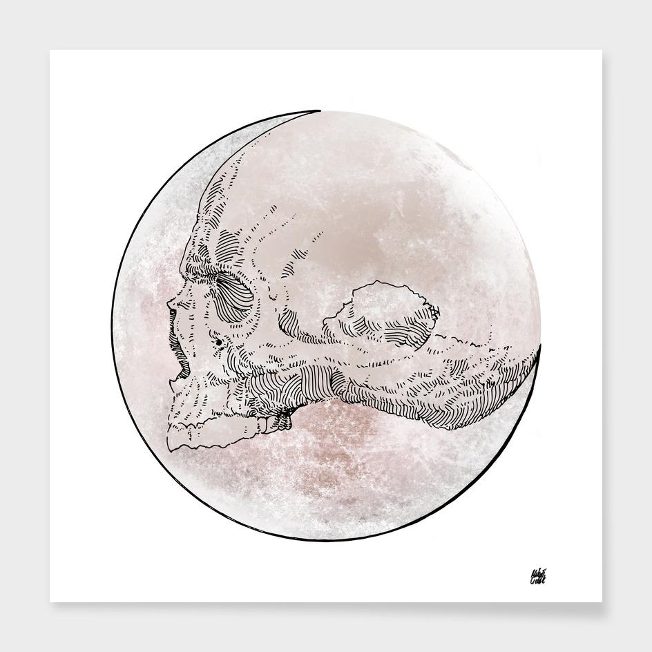 Moon v.02