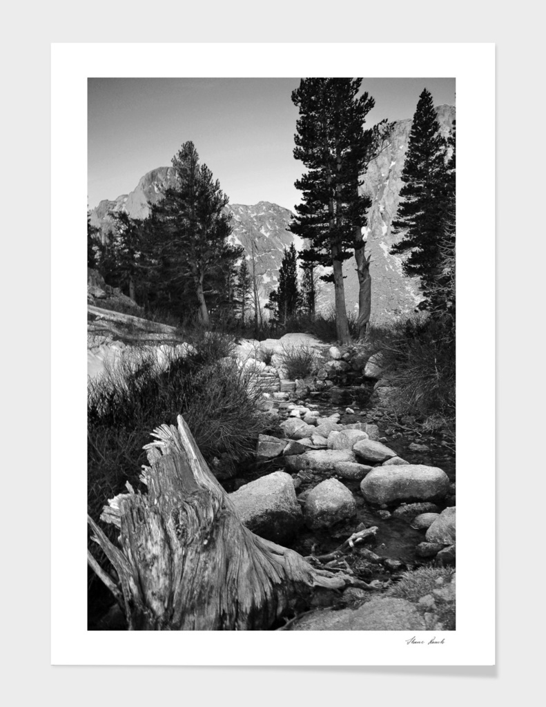 High in the Sierras