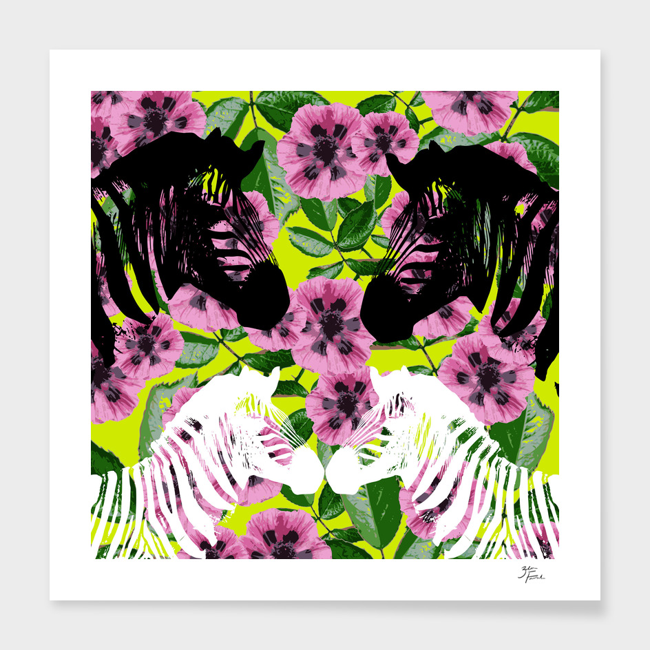 Camouflage Zebras
