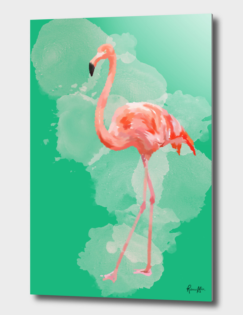 FLAMINGO: THE PINK BEAUTY