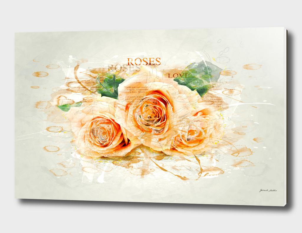 Roses / Flowers - Digital Art - Watercolors, Splash