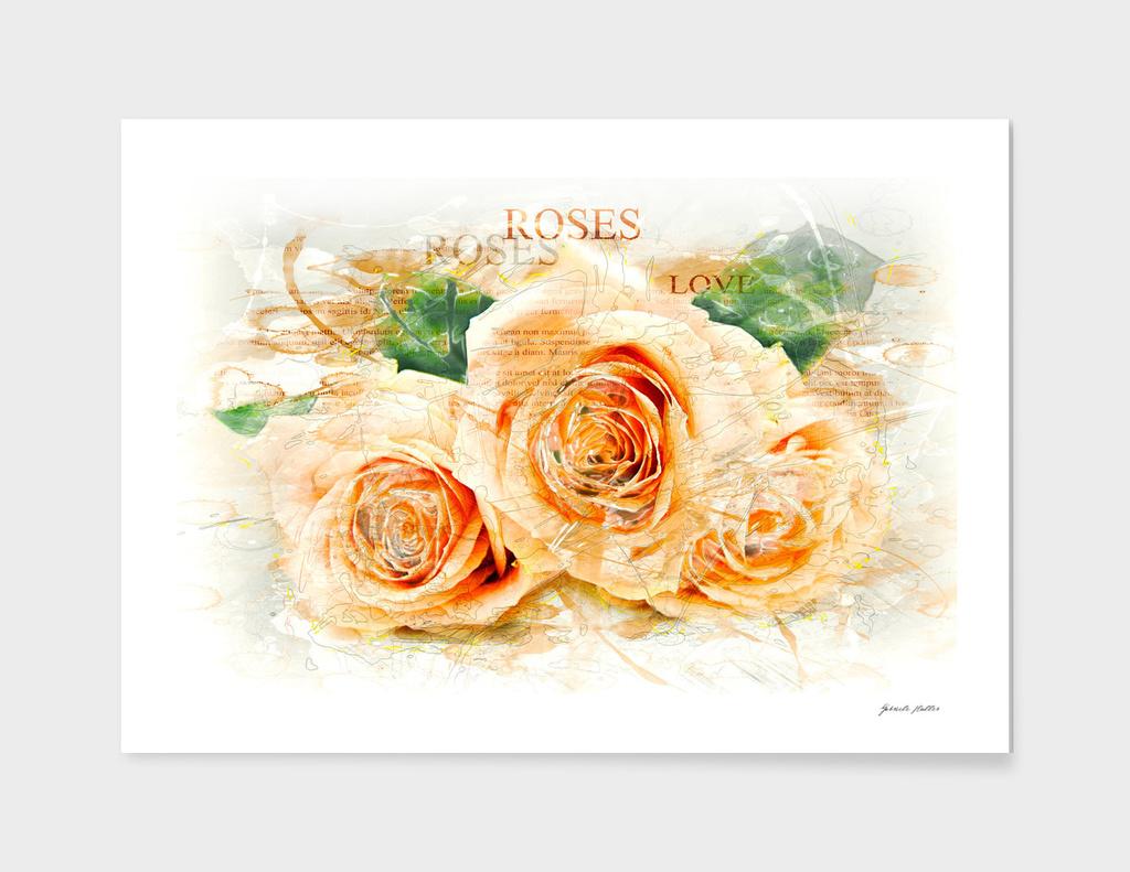 Roses / Flowers, Close-Up - Watercolors, Splash