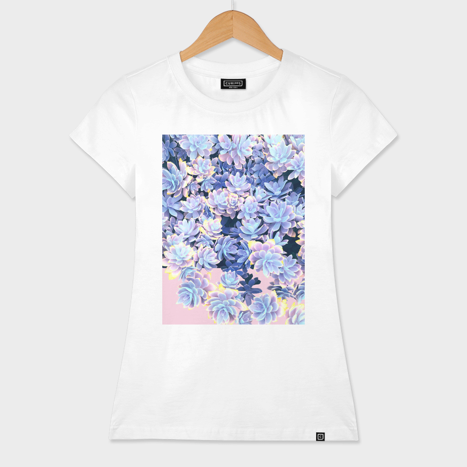 Cactus Fall - Blue & Pink