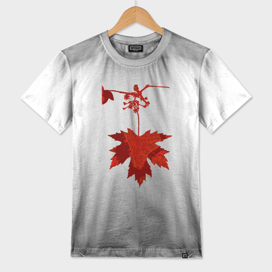 Maple on autumn. New York