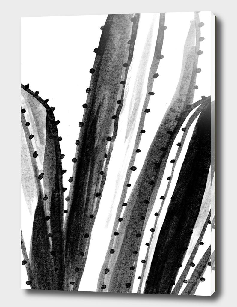 Minimal cacti