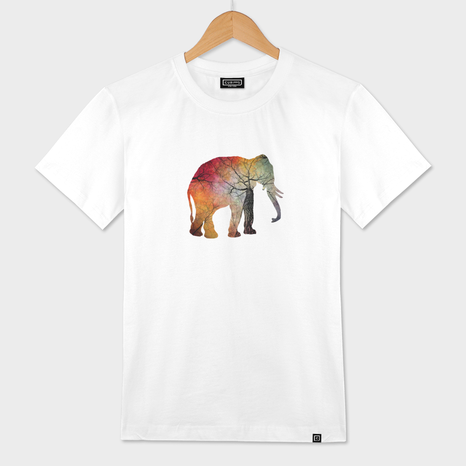 elephant soul