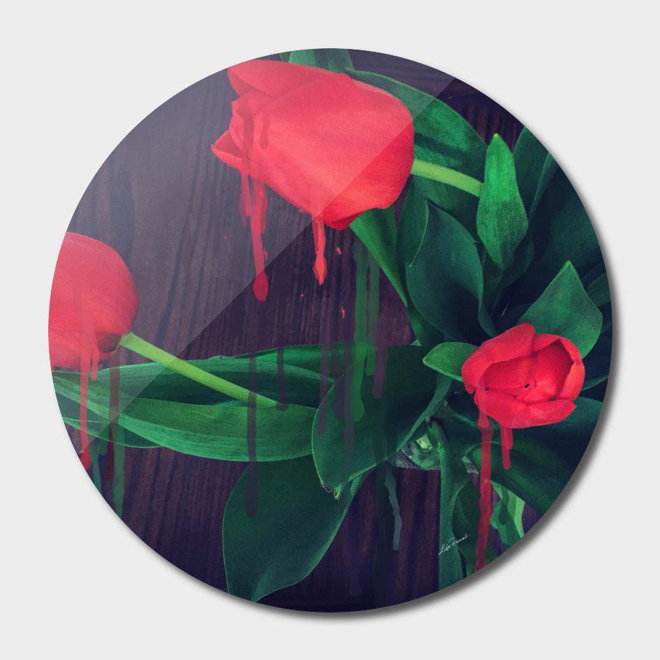 Bleeding Tulips by Lika Ramati