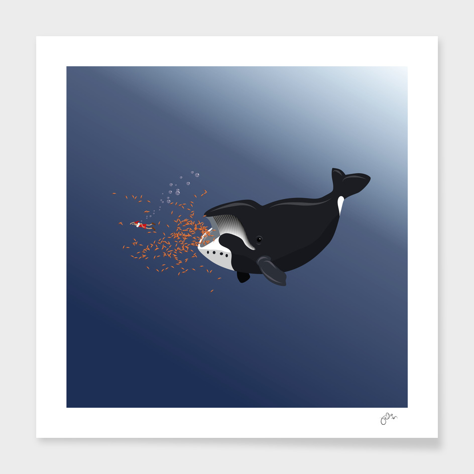 Pinocchio and the Bowhead whale