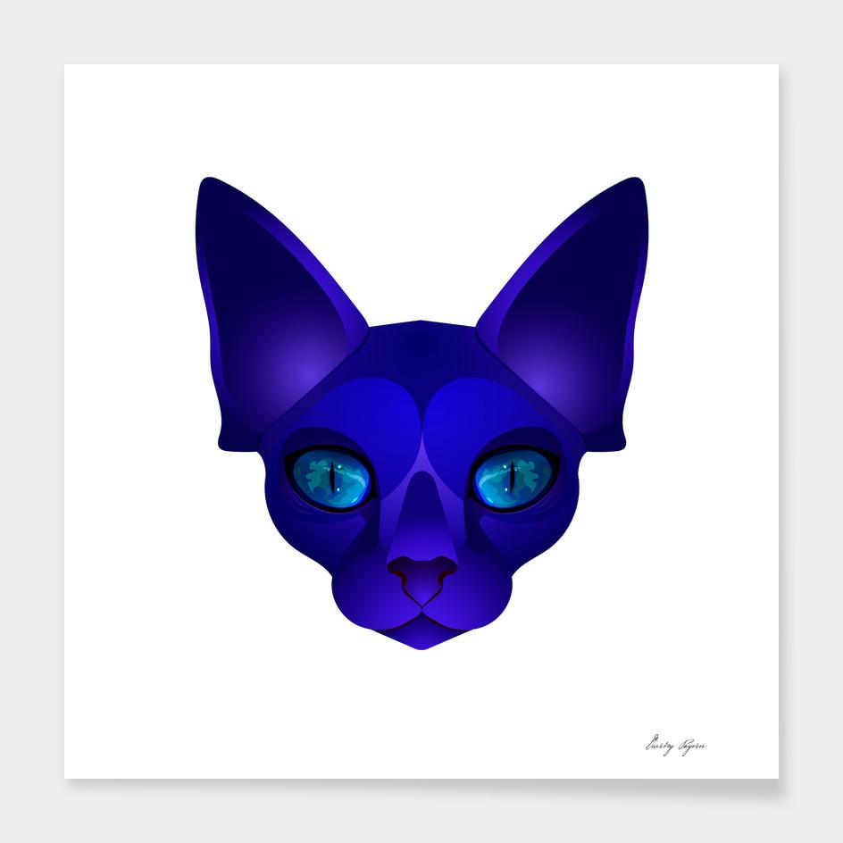 Blue cat №2