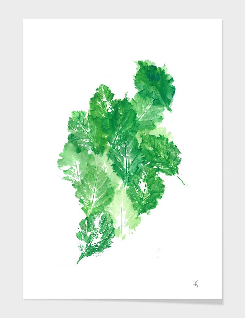 leaves dynamics