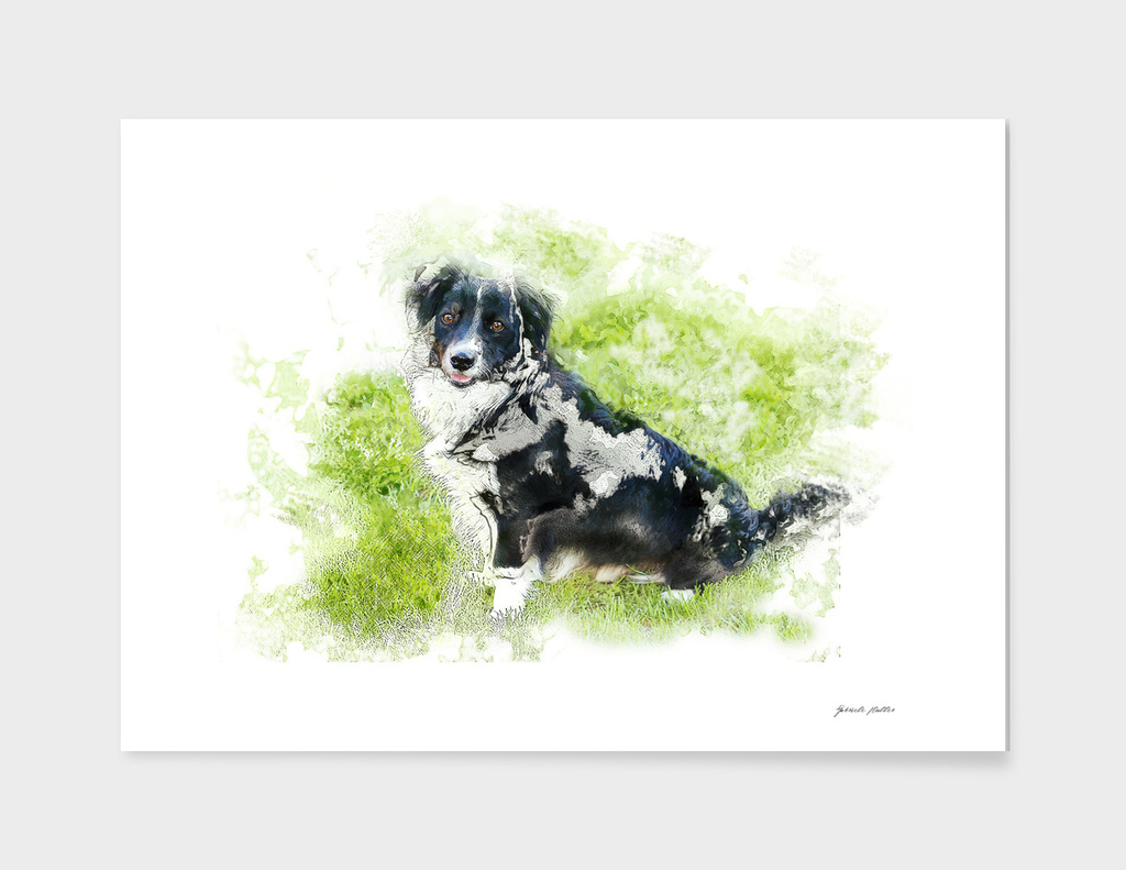 Dog - Digital Art