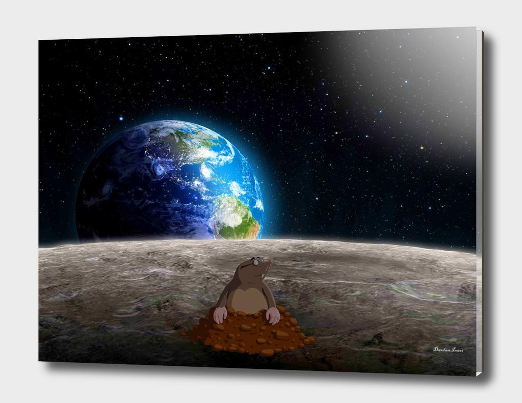 Mole on Moon