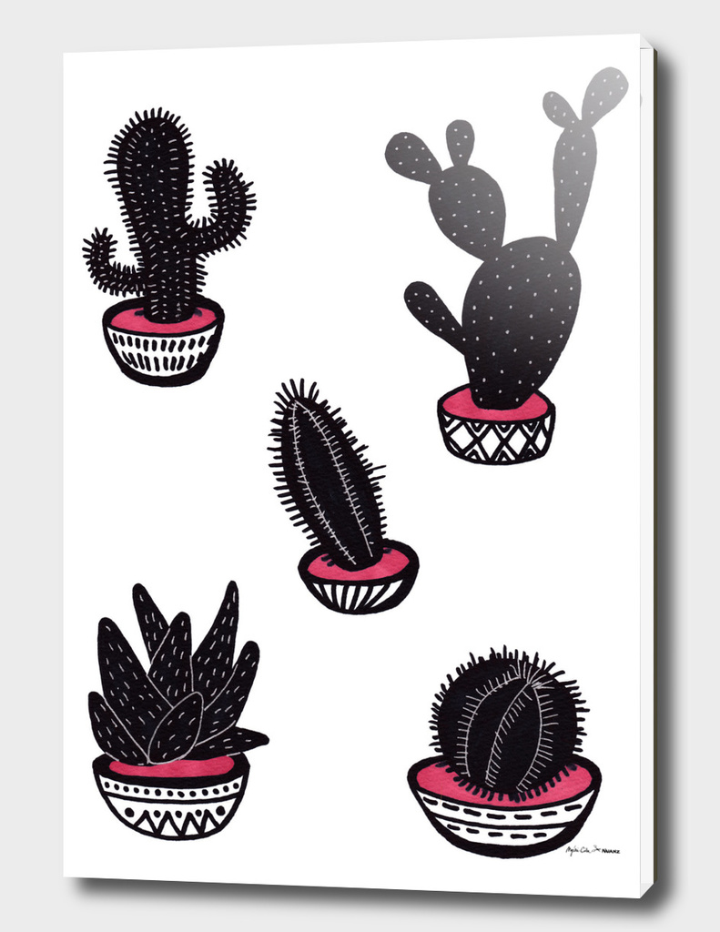 cactus collective