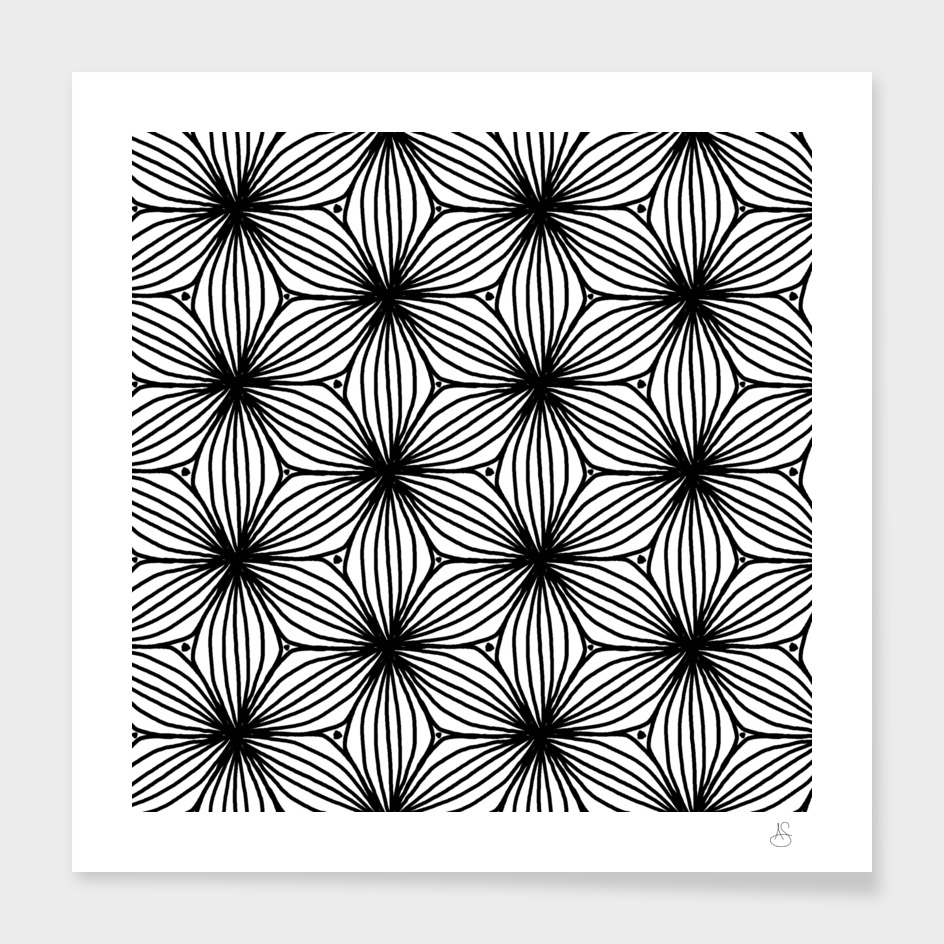 Black and White Petals