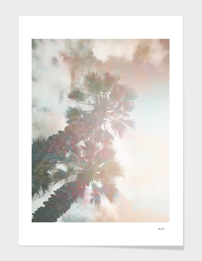 Tropical Day Dream