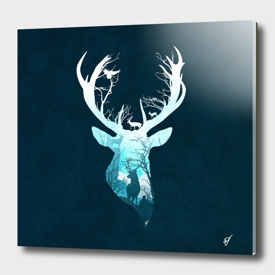 Deer Blue Winter