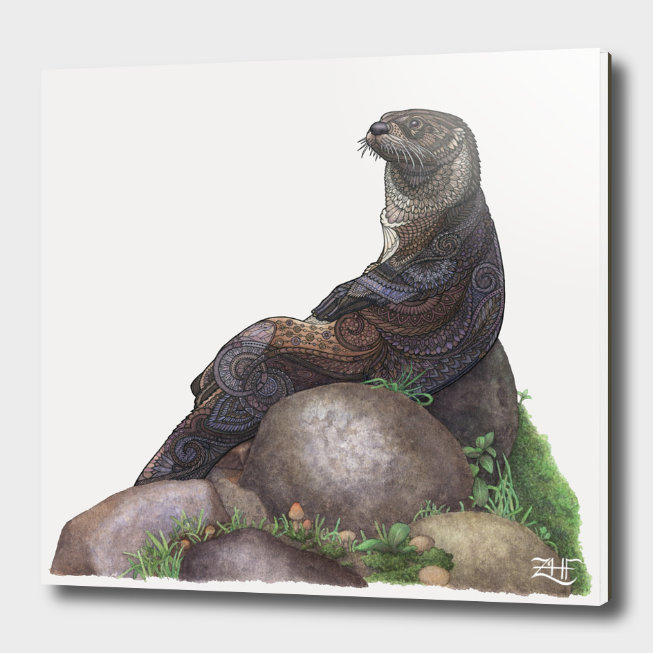 The Majestic Otter