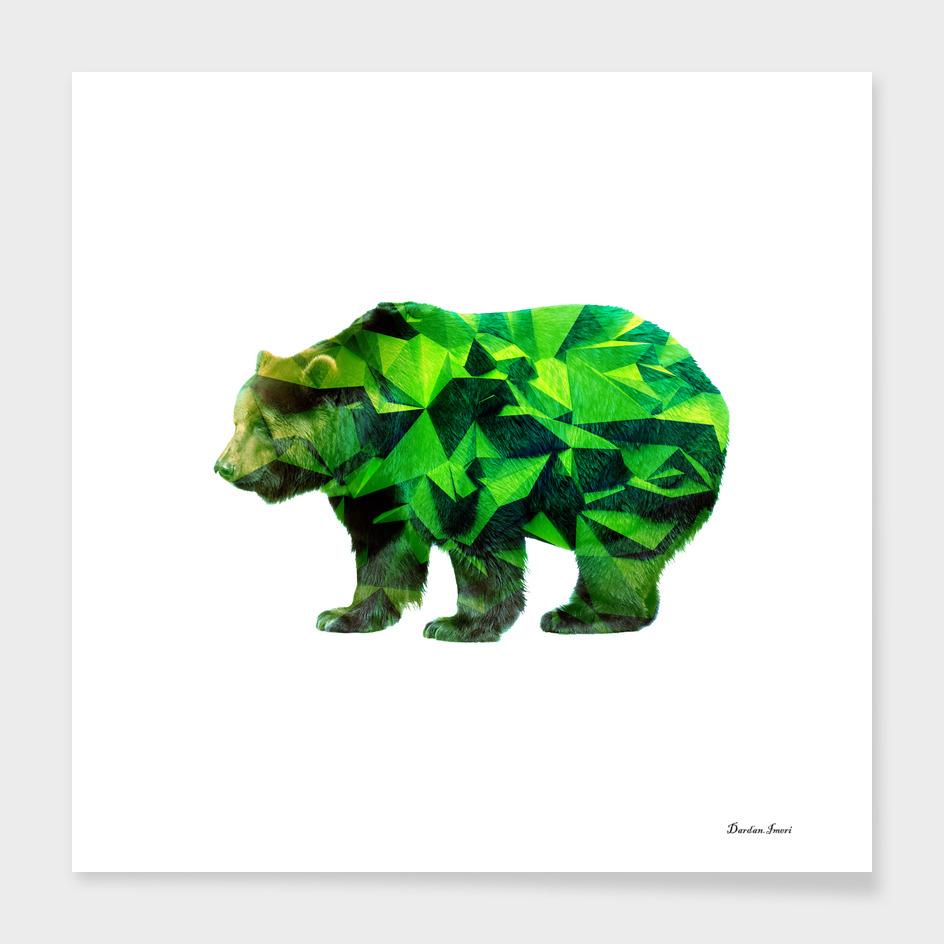 Bear High Triangles